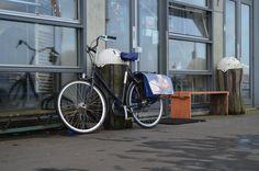 Example of a bike belonging to a woman in her Java Island, Amsterdam Street Ballet, Oxford Brookes University, Design Fields, Travel Organization, Java, Amsterdam, Cycling, Bike, Island