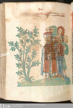 578 [287v] - Ms. Carm. 1 (Ausst. 47) - Das Buch der Natur - Page - Mittelalterliche Handschriften - Digitale Sammlungen  Hagenau, [um 1440]