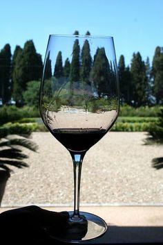 Sassicaia Wine (flickr: Megan Mallen)