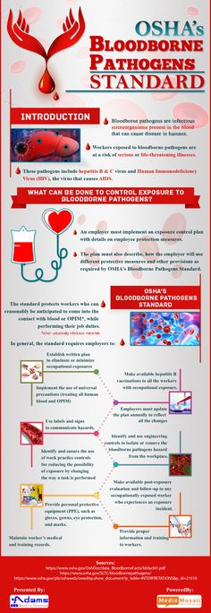 The Infographic OSHA's bloodborne pathogen standards lay down the guidelines for employers to protect their workers from 'life-threatening' pathogens. Osha Bloodborne Pathogens, Bloodborne Pathogens Training, Nursing Assistant, Dental Assistant, Osha Safety Training, Infection Control Nursing, Phlebotomy, Emergency Management, Workplace Safety