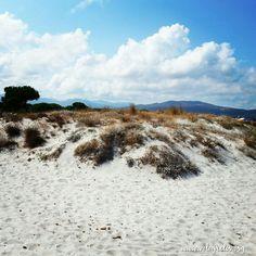 Dune a Sa Capannizza - Budoni