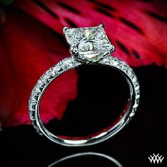 Image from http://www.whiteflash.com/articlefiles/snookies-engagement-ring.jpg.