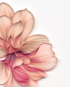 2019. Copyright © JUDiTH+ROLFE Art Floral, Floral Artwork, Paper Artwork, 3d Artwork, Artwork Ideas, Artwork Pictures, Art 3d, Artwork Design, Art Quilling