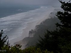 Cape Lookout, Oregon  My favorite place in the world!  I want to go back!