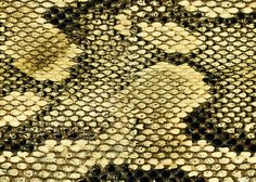 Snake http://www.profiles24.it/1138/battiscopa-snake-60mm?c=4540