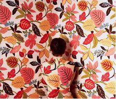 Trapped in Art Cecilia Paredes, Naturaleza Urbana