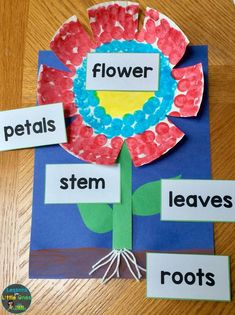 Flower Science Experiments & Parts of a Flower Activities parts of a flower craftivity and flower science experiments Spring Activities, Preschool Activities, Flower Activities For Kids, Kindergarten Science Experiments, Preschool Kindergarten, Preschool Crafts, Crafts For Kids, Theme Nature, Plant Crafts