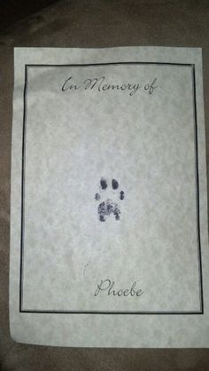 Vet's office sent this to me after having my sweet girl, Phoebe put to sleep. Just such a touching gesture! I loved it!