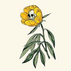digital art illustration sketch flower poppy and skeleton skull Art Sketches, Art Drawings, Illustration Art, Illustrations, Arte Sketchbook, Skull Art, Dark Art, Art Inspo, Art Reference