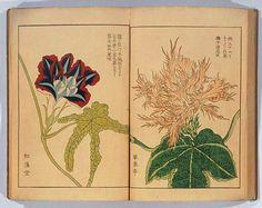 Hattori, Sessai, born 1807. Japan. https://modayperfume.files.wordpress.com/2014/08/2940_1_19.png