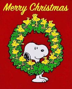Woodstock-Kranz - ❇Walking In A Winter Wonderland❇ - Weihnachten Snoopy Images, Snoopy Pictures, Peanuts Christmas, Charlie Brown Christmas, Christmas Cartoons, Peanuts Cartoon, Peanuts Snoopy, Christmas Quotes, Christmas Love