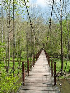7 hikes in Maryland:  The Swinging Bridge off the Grist Mill Trail.