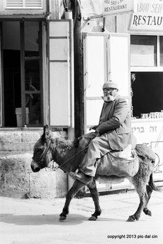 Donkey #people #streetphotopio Eye Expressions, Street Photographers, Donkey, Around The Worlds, Italy, People, Fictional Characters, Italia, Donkeys