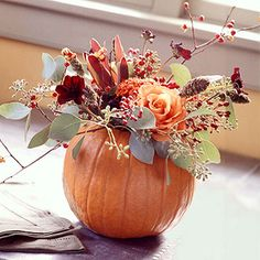 Fall Pumpkin Roses Centerpiece: Turn a pretty pumpkin into a high-style vase for this seasonal floral arrangement -- it's formal enough for gala Thanksgiving dinner, but versatile enough for any fall occasion. This bouquet features apricot-color roses, cockscomb, hypericum berries, seeded eucalyptus, and bittersweet vines.