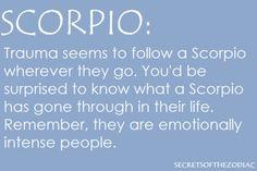 Scorpio Zodiac october November t shirt born t-shirt women men ab Scorpio Zodiac Facts, Scorpio And Cancer, Astrology Scorpio, Scorpio Traits, Scorpio Love, Scorpio Sign, Scorpio Horoscope, Scorpio Quotes, My Zodiac Sign