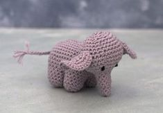 elefant sangkuffert