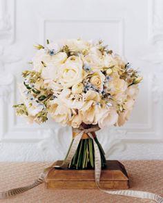 warm white roses