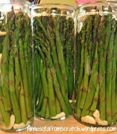 **This recipe is acidified using vinegar to pickle the asparagus and is made for water bath canning.*** So last Tuesday I pickled 6 lbs of asparagus using a recipe I hadn't tried before. Canning Vegetables, Veggies, Canning Asparagus, Pickled Vegetables Recipe, Best Pickled Asparagus Recipe, Canning Zucchini, Dinner Vegetables, Pickled Garlic, Healthy Vegetables