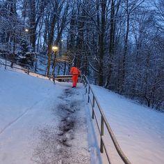munich | germany | münchen | deutschland | untergiesing | streudienst im winter am giesinger berg