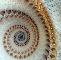 thestylishgypsy: Spiral Fractal