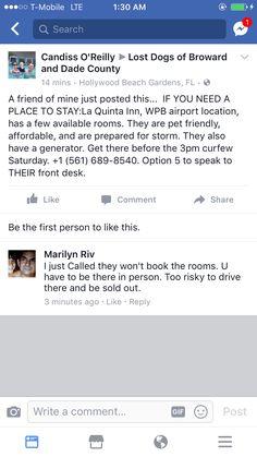 Hurricane Party, La Quinta Inn, Hollywood Beach, Beach Gardens, Losing A Dog, Pets, Animals And Pets