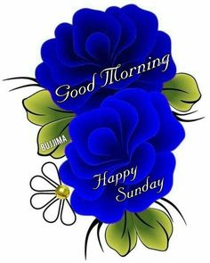 Beautiful Morning Messages, Good Morning Beautiful Images, Good Morning Picture, Beautiful Gif, Morning Pictures, Beautiful Flowers, Sunday Gif, Sunday Images, Sunday Morning