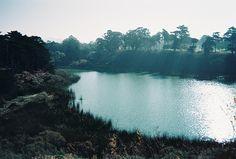 lake merced, san francisco, via Flickr.
