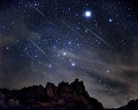 Leonids meteors rain down through the constellation Canis Major the Big Dog.  (Photo by Tony Hallas)
