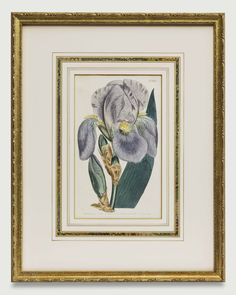 Attention to detail makes our fine framing stand above the rest, with framing to suit every type of art and decorating style. Old Maps, Antique Maps, Antique Prints, Types Of Art, Custom Framing, Decor Styles, Rest, Concept, Fine Art