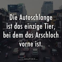 Die Autoschlange ist das einzige Tier, bei dem das Arschloch vorne ist The snake is the only animal with the asshole in front Excellence Quotes, Serpent, Good Jokes, Sarcastic Humor, Cool Words, Haha, Funny Quotes, Funny Pictures, Sayings