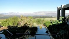 All the info about Wine tasting at Waverley Hills Wine Estate in Tulbagh, South Africa Wineries, Wine Tasting, South Africa, African, Colors, Wine Cellars, Colour, Color, Paint Colors