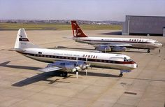 The old and new Australian Airlines, Boeing 707, Airline Logo, Best Airlines, Passenger Aircraft, Air New Zealand, Aviation Industry, Vintage Tractors, Vintage Airplanes