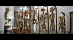 forensic museum thailand