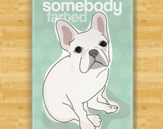 Funny Magnet French Bulldog - Somebody Farted - White French Bulldog Gifts Fridge Refrigerator Funny Magnets $9