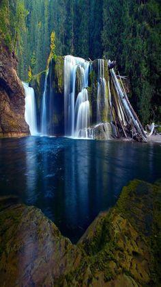 Dolné Lewis River Falls - Národný les Gifford Pinchot, Washington