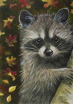 Raccoon Wildlife Art Melody Lea Lamb ACEO Print by MelodyLeaLamb, $6.25
