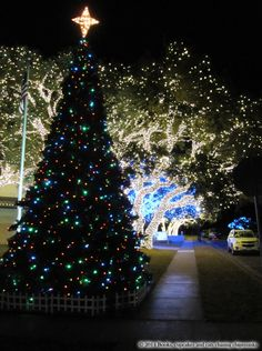 Christmas Lights in Johnson City, TX | Books, Cupcakes, and Cats Chasing Chipmunks
