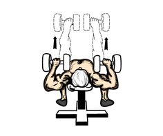 Flat Bench Press with Dumbbells