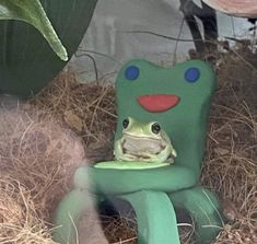 Invest in this frog staring trough the void sitting on a froggy chair | /r/MemeEconomy