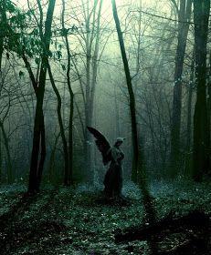 Amazing Places: Forest Angel, The Ozarks, Missouri