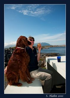 far side irish setter | Ups! Someone else was interested in our sandwich - a 'Great Black ...