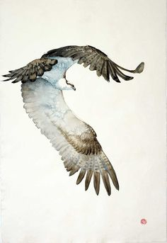 "Don't miss out on ""Shapes and Constellations"" by the magnificent Karl Martens. The exhibition is part of our winter series and runs until the 7th of October. Download your exhibition catalogue and view the works via link in image. __________________ Karl Martens Osprey (Unframed) Signed Watercolour on Indian hand-made paper 61 x 41 in 154.9 x 104.1 cms (KaM151) #artist #artgallery #london #contemporaryart #birds #paintings #watercolour #finearts #artist"