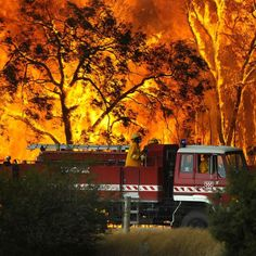brushfire victoria australia Natures Fury: 30 Chilling Photos of Natural Hazards Black Saturday, California Wildfires, Wild Fire, State Forest, All Nature, Amazing Nature, Falling From The Sky, Victoria Australia, Extreme Weather
