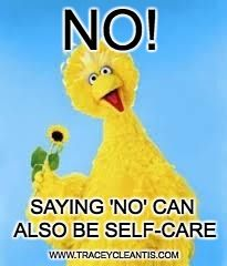 Are you Elmo accommodating or Oscar the grouch when it comes to self-care?It is time to give people pleasing the Bg Bird! Come on over to my blog & learn the elementary language of self-care! http://www.traceycleantis.com/blog/