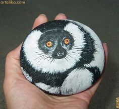 Lemur.   Hand painted rock.