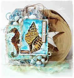 macarena-creativa: Seashells