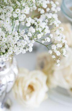 Flowers. #white