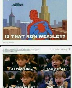 41 Ideas For Funny Harry Potter Things Ron Weasley Magia Harry Potter, Harry Potter Jokes, Harry Potter Fandom, Harry Potter Cast, Dc Memes, Memes Humor, Funny Jokes, Marvel Memes, Humor Humour