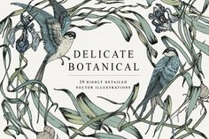 Delicate Botanical Collection by Feanne on @creativemarket