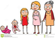 Cartoon illustration of a woman during different life stages, life cycle, growth, development Stages Of Human Development, Child Development, Personal Development, Human Life Cycle, Caricature, Image Clipart, My Little Baby, Kids Videos, Illustrations